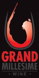GM Logo New