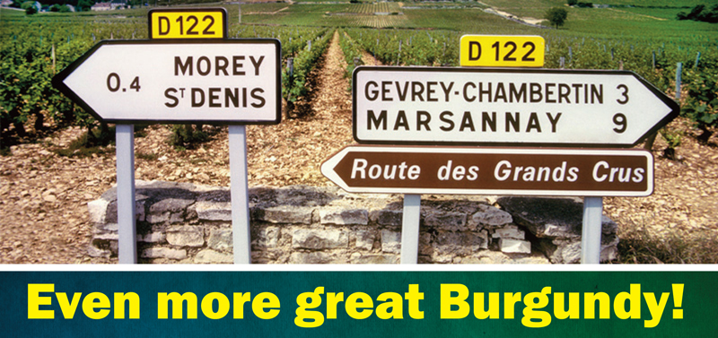 More Great Burgundy Header