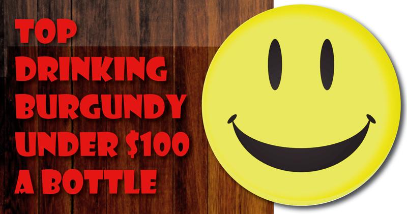 Burgundy Under $100 Header