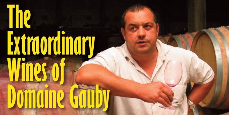 Gauby Extraordinary Header
