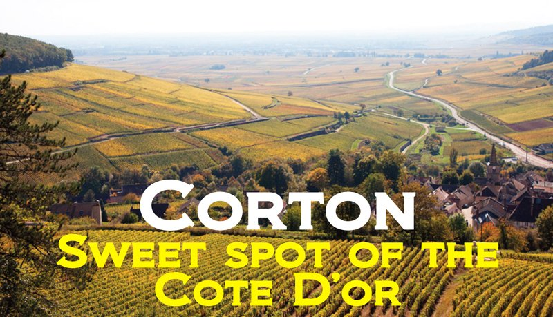 Corton Sweet Spot Header