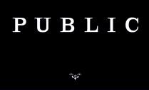 Public Logo Cropped 2
