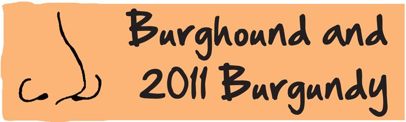 Burghound 2011 Burgundy