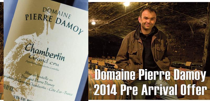 Damoy 2014 PA Header