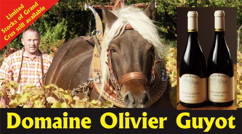 Olivier Guyot Header