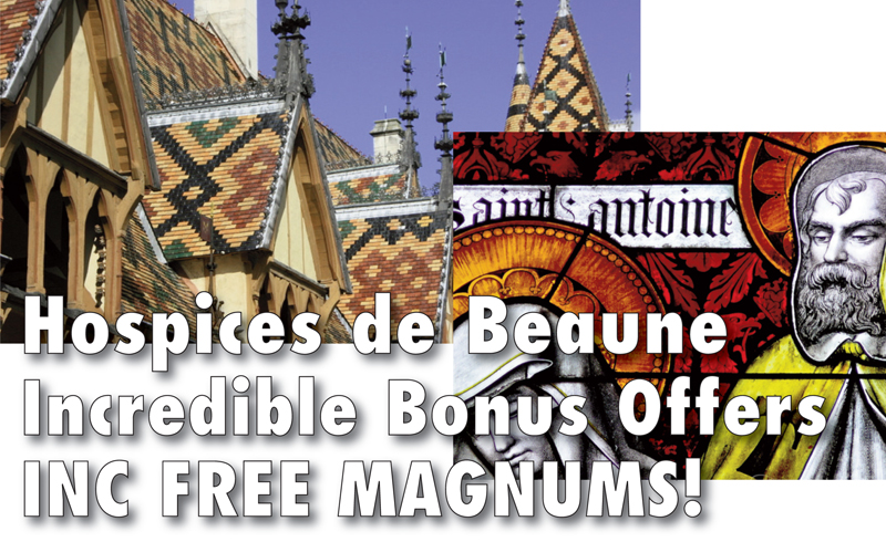 Hospices Magnum Offer