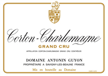 Guyon Corton-Charlemagne