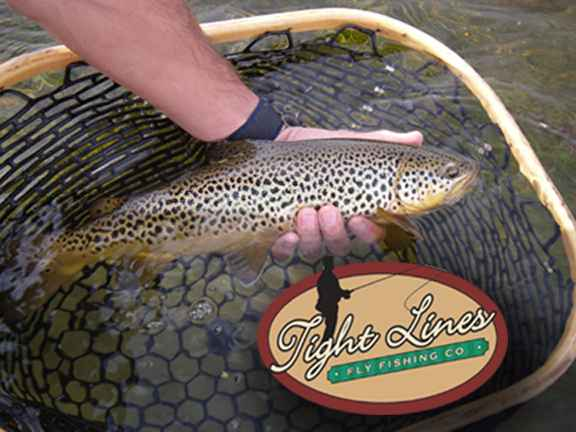 News from tight lines fly fishing co for Tight lines fly fishing