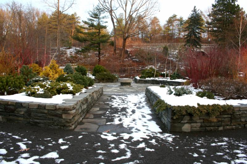 Designing A Winter Garden
