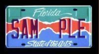 Drive the Arts License Plate