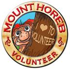 Volunteer Troll Medallion
