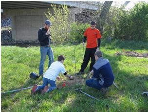 CommuniTree planting