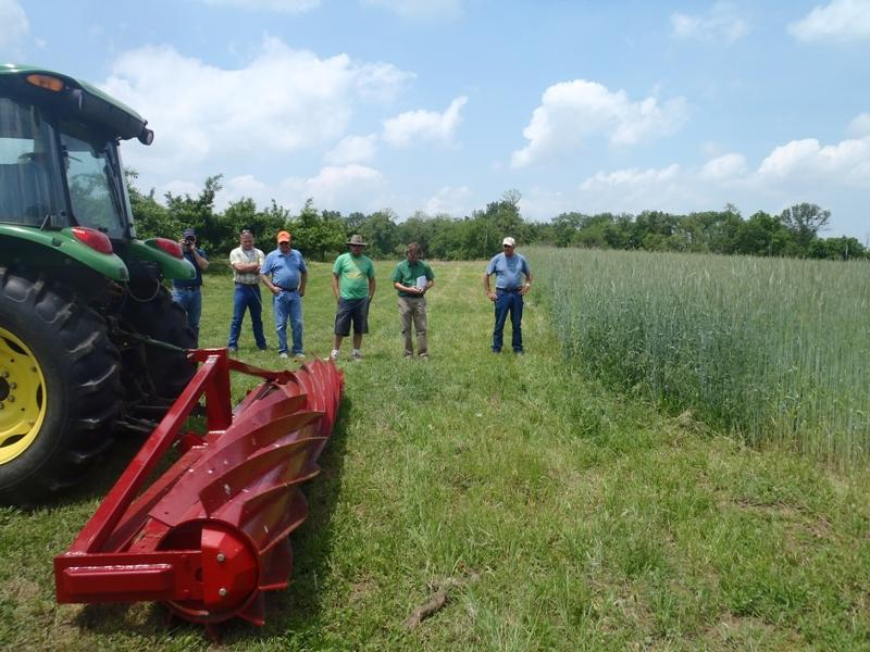 Cover Crop Demonstration in the Eastern Panhandle