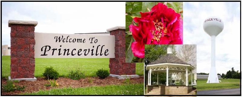 Princeville Banner