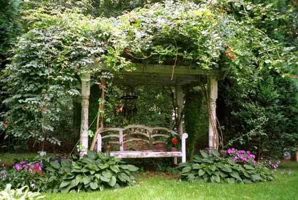 Intimate Garden
