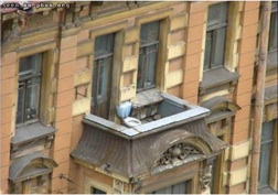 Toilet on roof