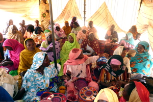 darfur womens ctr group