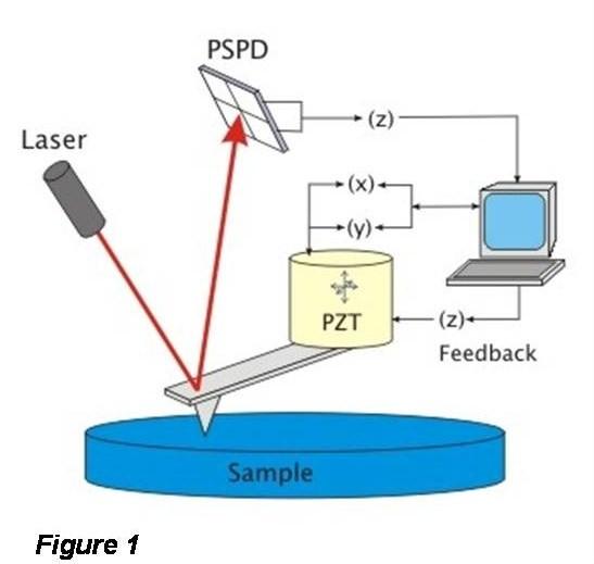 principle of AFM operation