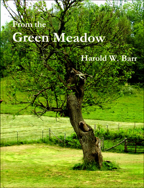From the Green Meadow