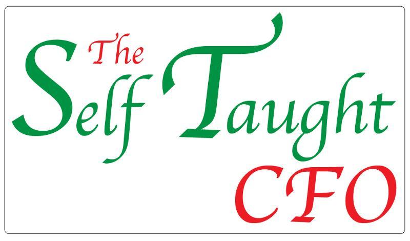 The Self-Taught CFO