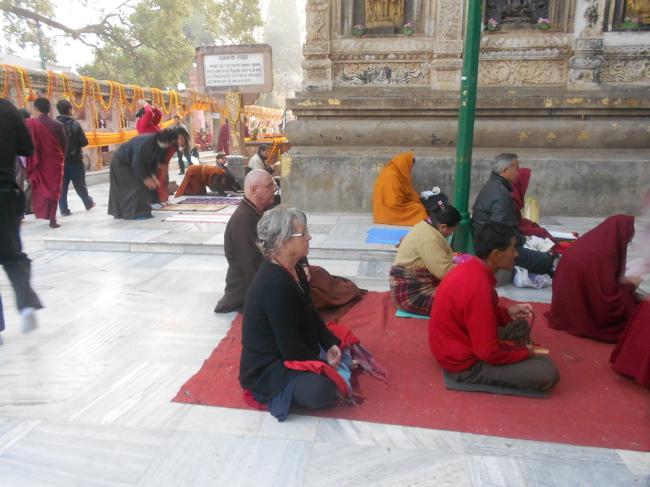 Bodhi tree meditation