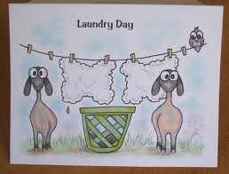 Sheep on Laundry Day