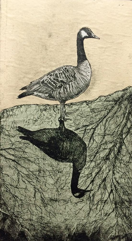 deb dml goose