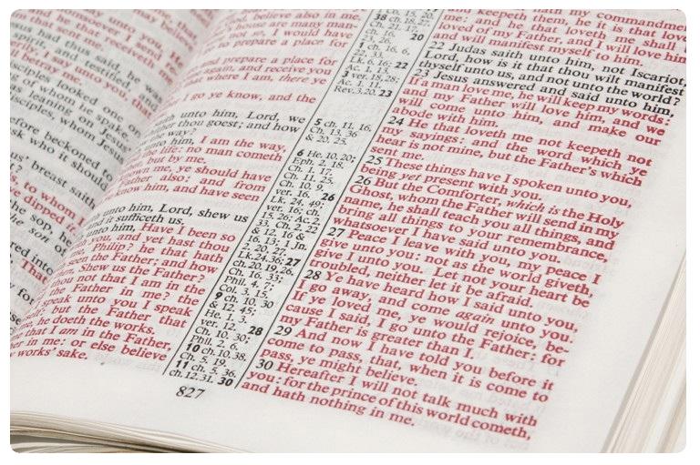 Bibleness