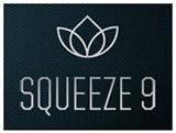 Sorenson Squeeze 9 logo