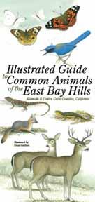 faunal guide