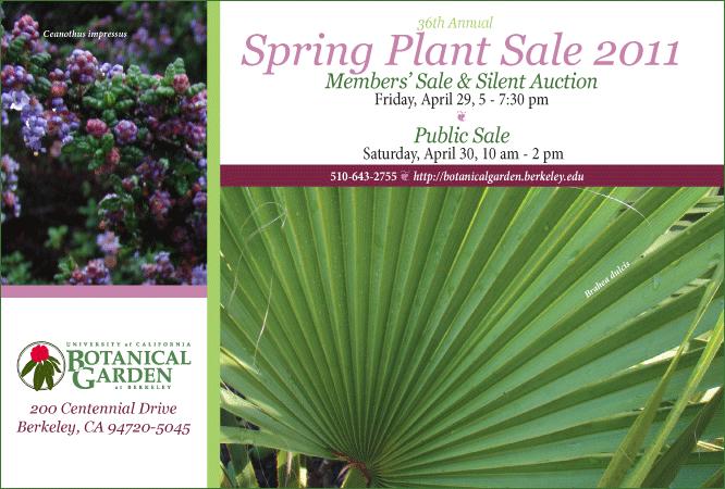 Spring Plant Sale 2011