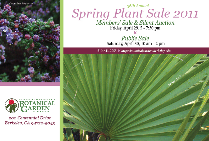 Sspring Plant Sale Card 2011
