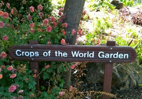 crops of the world sign