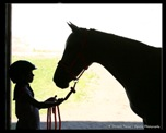 silouette of girl and horse