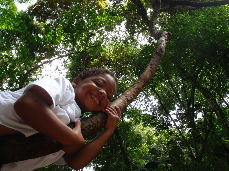 Peter in tree