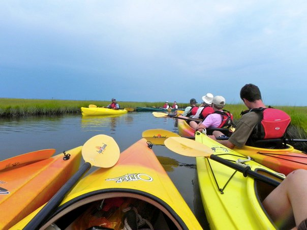 birding by kayak tour