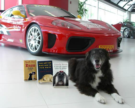Featured Furry Friend with Ferrari