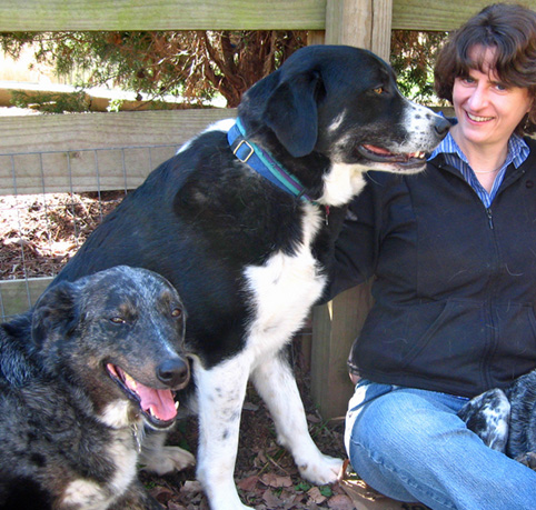 Sara and her dogs