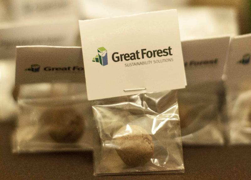Great Forest Inc Logo