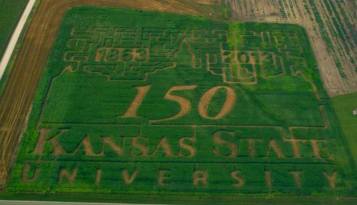 150 crop art