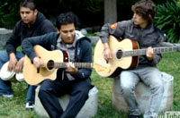 The Ceres (band)