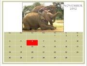 Conservative Calendar