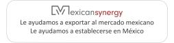 Mexican Synergy Logo