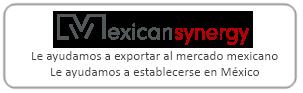 MS Logo