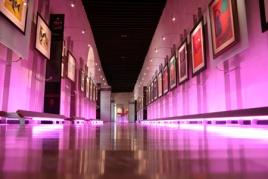 MuseoPedroCoronel