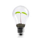 Grow an idea