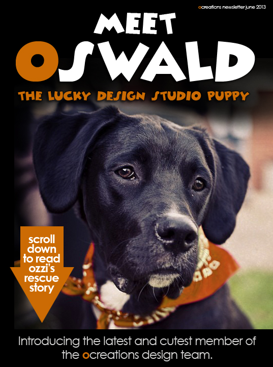 oswald the lucky design studio puppy