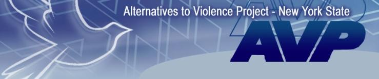 AVP/NY web site banner