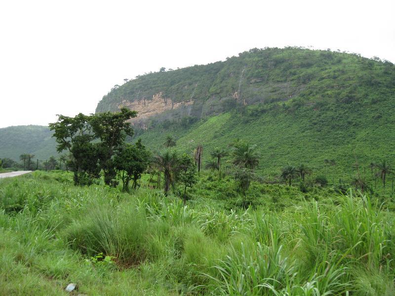 Fertile landscape in Guinea