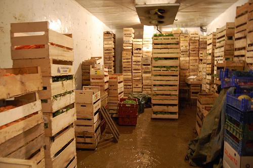 Veg in storage